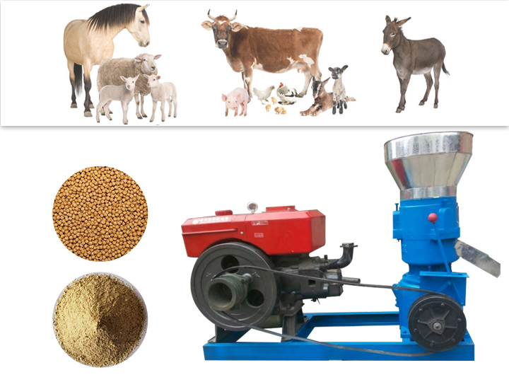 Effect picture of feed pellet mill machines